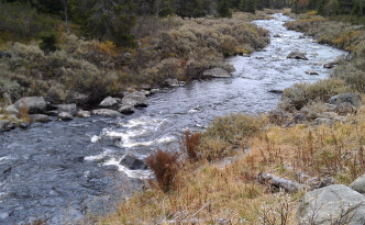 Slik skal livet føles - som vannet som renner i en elv. Foto: ninatomtcarlsen.no